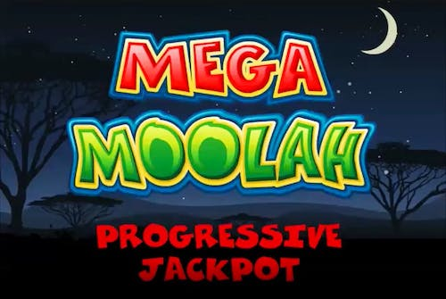 Explore the Wild in Mega Moolah